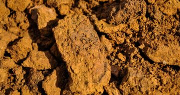 CROISILLE-CALCAIRE-argiles-siliceuses-ferreuses