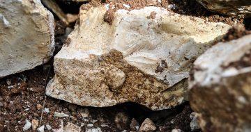 CROISILLE-CALCAIRE-kimmerigien